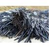 江门旧电缆回专业回收收公司