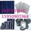 福州多晶太阳能组件回收免费到厂看货