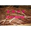 渭南废铜回收紫铜回收