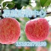 沂南县东鼎果蔬购销中心