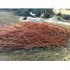 长治电缆回收/临汾电缆回收/朔州电缆回收/忻州废电缆回收