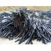 佛山舊電纜回收,佛山報廢舊電纜回收,佛山高低壓電纜回收