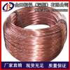 批发现货T1紫铜软线 C1100紫铜硬线 特硬紫铜线/扁线
