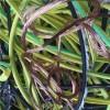 废品回收 广州废品回收