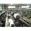 衢州纺织厂淘汰设备回收价格每日实迅I37-354I-6876