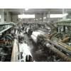 衢州二手纺织厂设备回收价格每日实迅I37-354I-6876