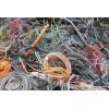 东莞回收废电缆公司