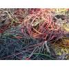 光明廢電纜回收、光明廢品站廢電纜回收中心
