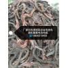濱州上門回收廢銅電線電纜變壓器鋁線