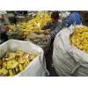 面制品回收食品回收公司