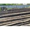 四川常年上门高价回收销售光缆、油木杆、钢绞线、防腐木