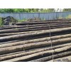 貴州仁懷常年上門高價回收銷售光纜、油木桿、鋼絞線