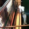 銅包鋼扁鋼代理加盟 河北好用的銅包鋼扁鋼