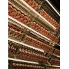 桂林回收老董酒 回收375茅臺酒 回收人頭馬