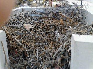 石家庄今日废钢筋头多少一吨河北钢筋头ysb248易胜博手机版公司