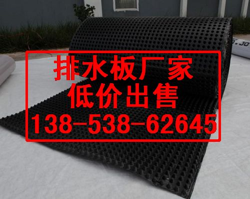 专业生产蓄排水板厂家+花园蓄排水板3公分【出厂价】