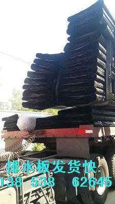 黄石地下室车库专用排水板&车库顶板《底板》疏水板供货商
