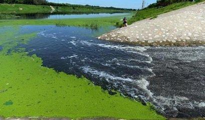 淮北市人大常委会对黑臭水体治理情况开会研究